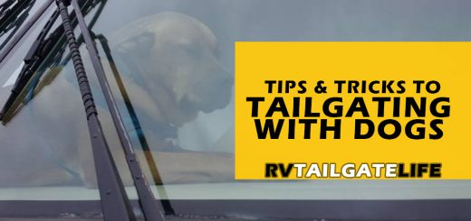 Tips and tricks for RV tailgating with dogs