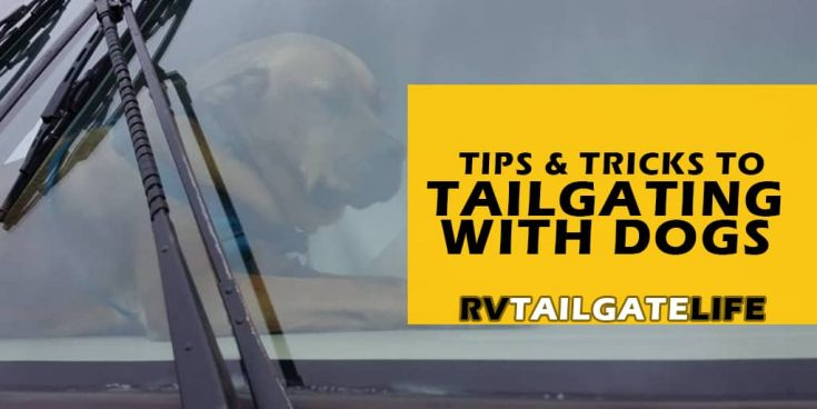 10 Tips for RV Tailgating with Dogs