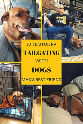 Having an RV to tailgate in means you can take your dogs to the tailgate! Tips on how to make tailgating with dogs the most enjoyable experience for both dogs and humans