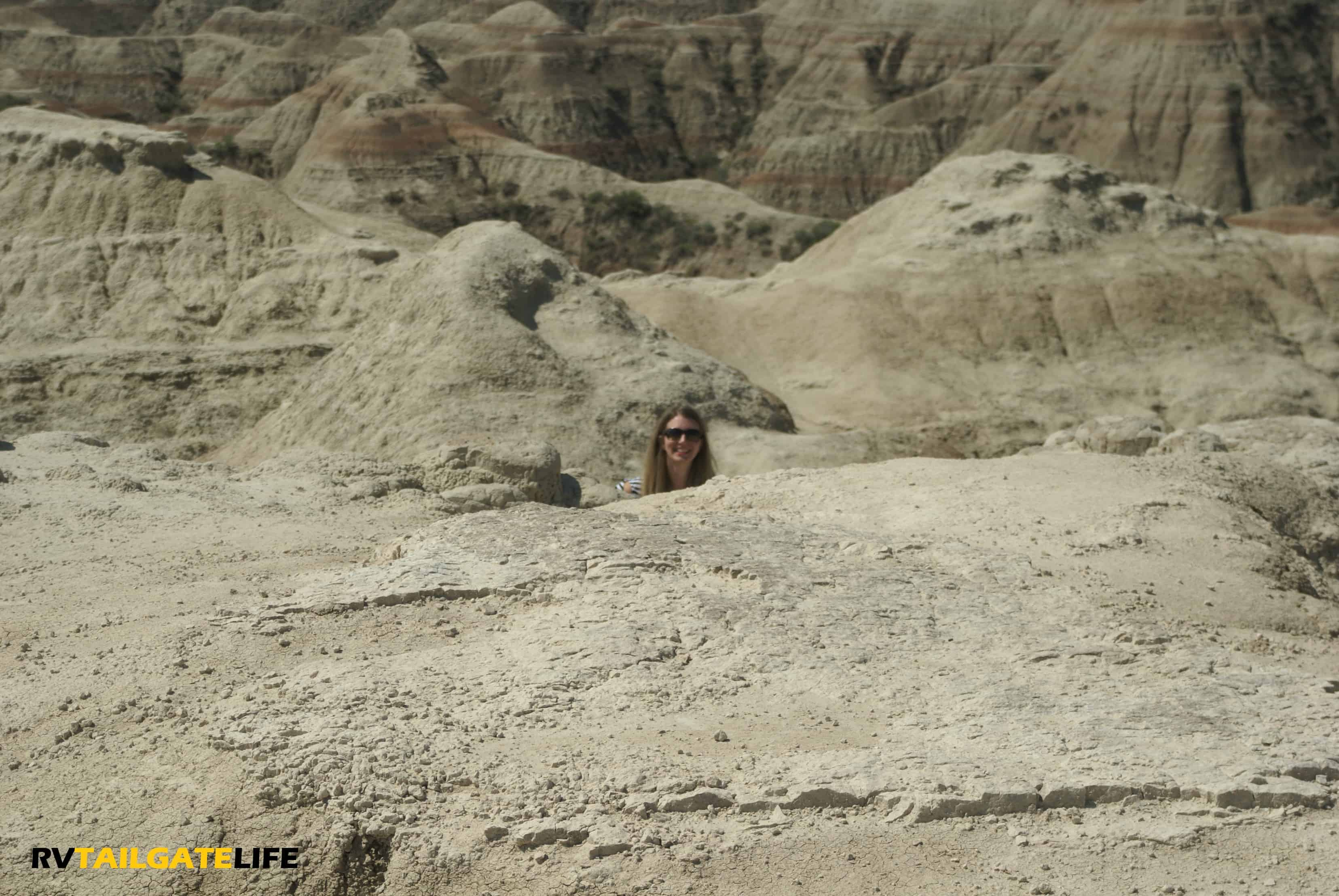 Heather pops up over some rock formations in the Badlands National Park.