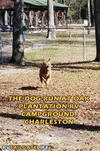 Oak Plantation RV Campground Dog Run