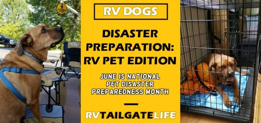June is National Pet Disaster Preparedness Month - get your pets and your RV ready in case of disaster