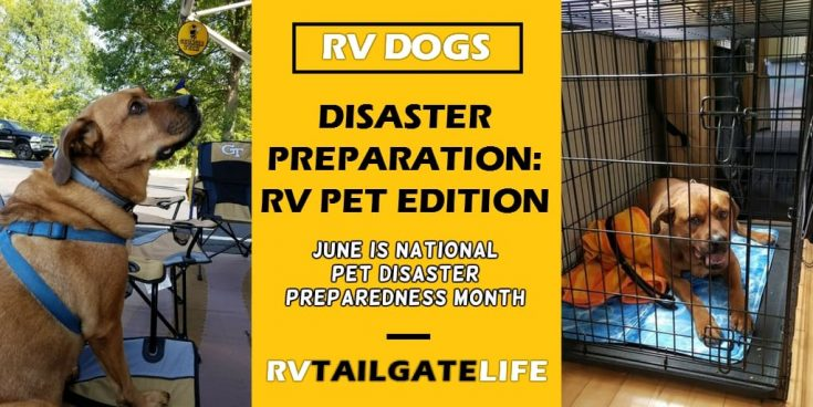 RVs and Pet Disaster Preparedness Month