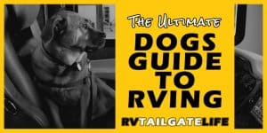 The Ultimate Dogs Guide to RVing