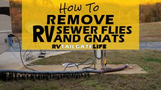 How To Remove RV Sewer Flies and Gnats