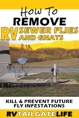 How to Remove RV Sewer Flies and Gnats - Kill and prevent future fly infestations