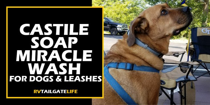 Castile Soap Miracle Wash for Dogs & Leashes